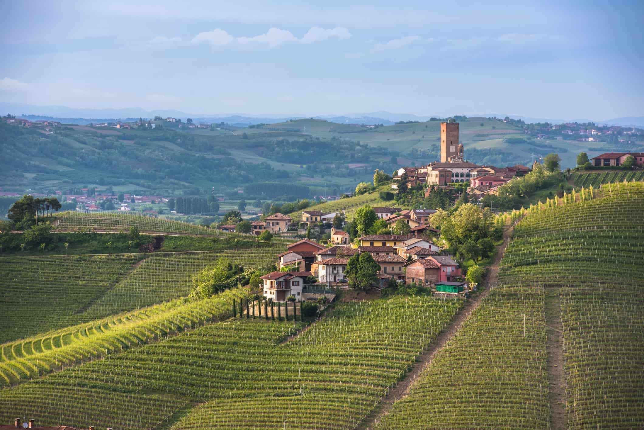 Panorama of Piedmont vineyards and Barbaresco town